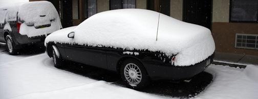 lex_under_snow2