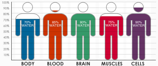 Water content in the body.